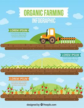 有机农场的正确定义是什么?