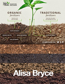 有机肥和化肥的区别