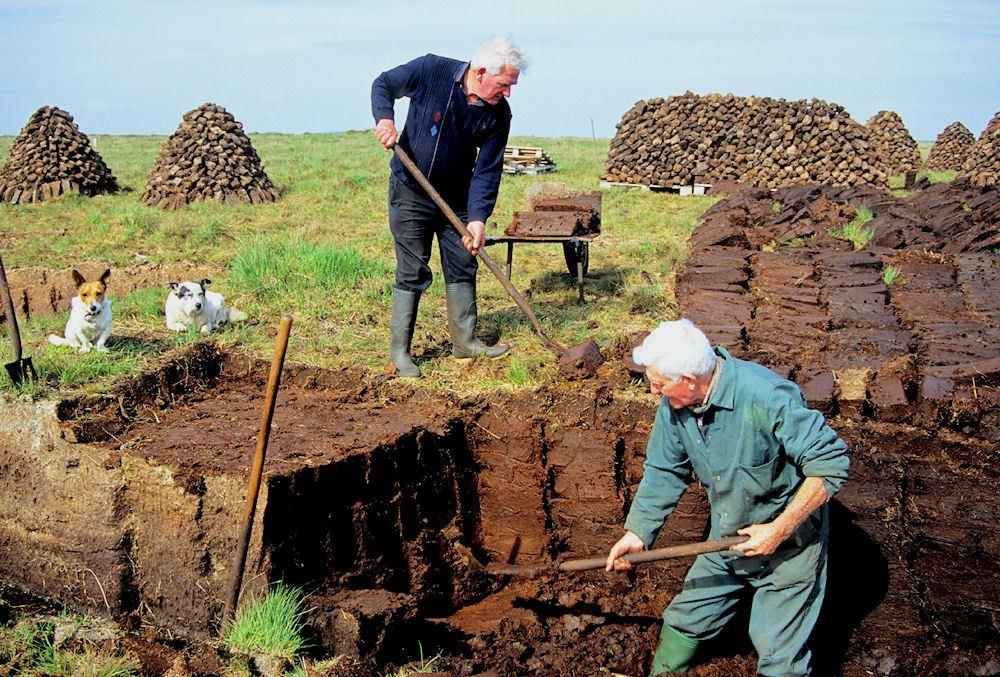 土壤修正的真正含义
