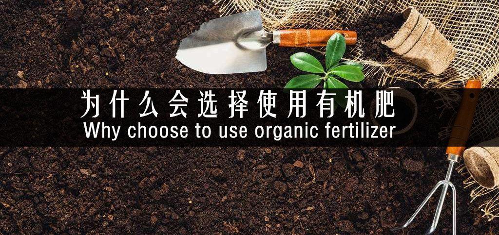 成都市绿康有机肥厂家批发_为什么选择使用要用有机肥?