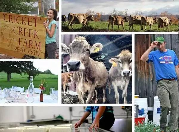 三农启示录:美国年轻人这样搞农业