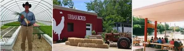 成都市绿康有机肥有限公司_有机肥批发_有机肥厂家_营养土批发厂_蚯蚓粪蚯蚓土