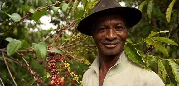 我们对现代新农人的定义,谁都可以成为现代新农人