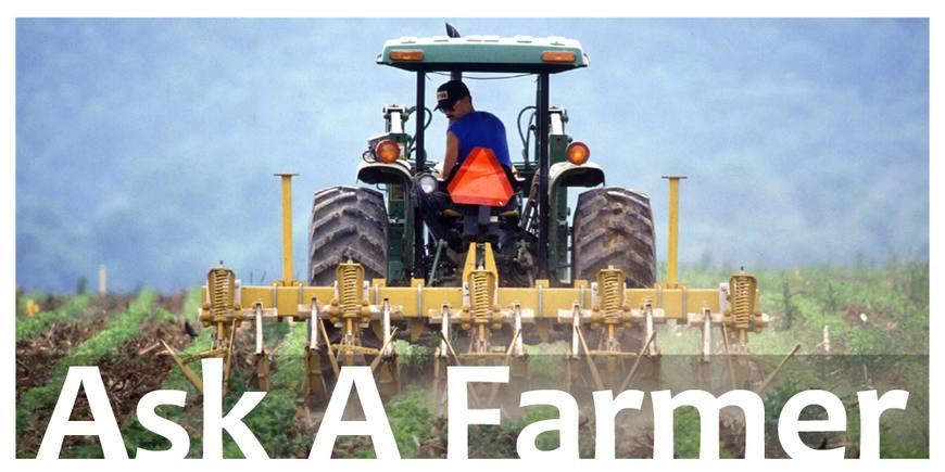 农业创业:任然有广阔的天地等你来,丰收并不难