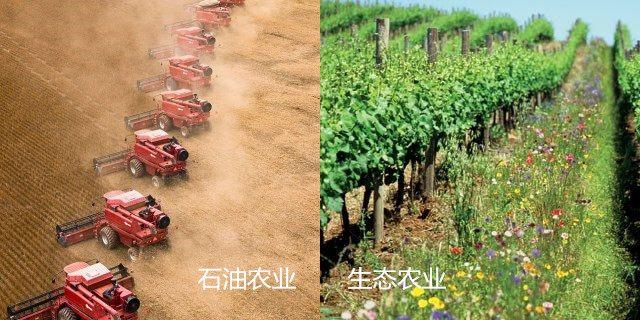 石油农业对比生态农业