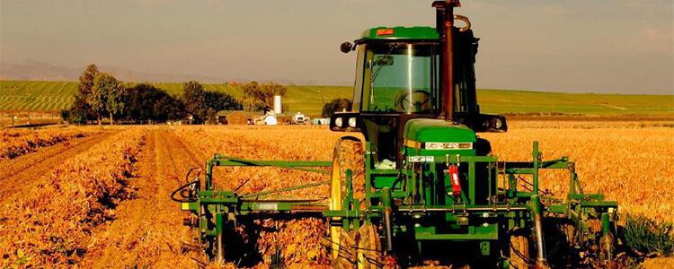 有机农业同样要注意环境问题