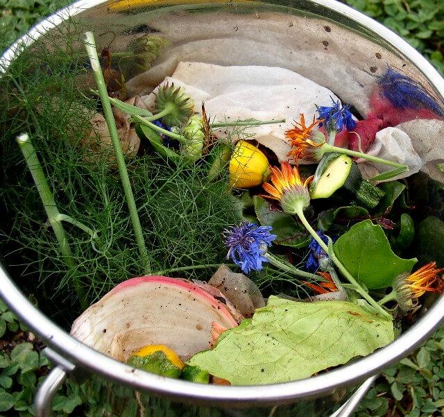 简单堆肥厨余垃圾,让厨余垃圾变成沃土