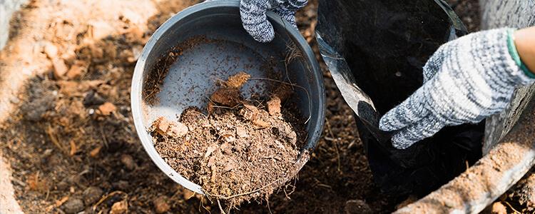 简单6步教你做出堆肥土,养花不需要再买营养土