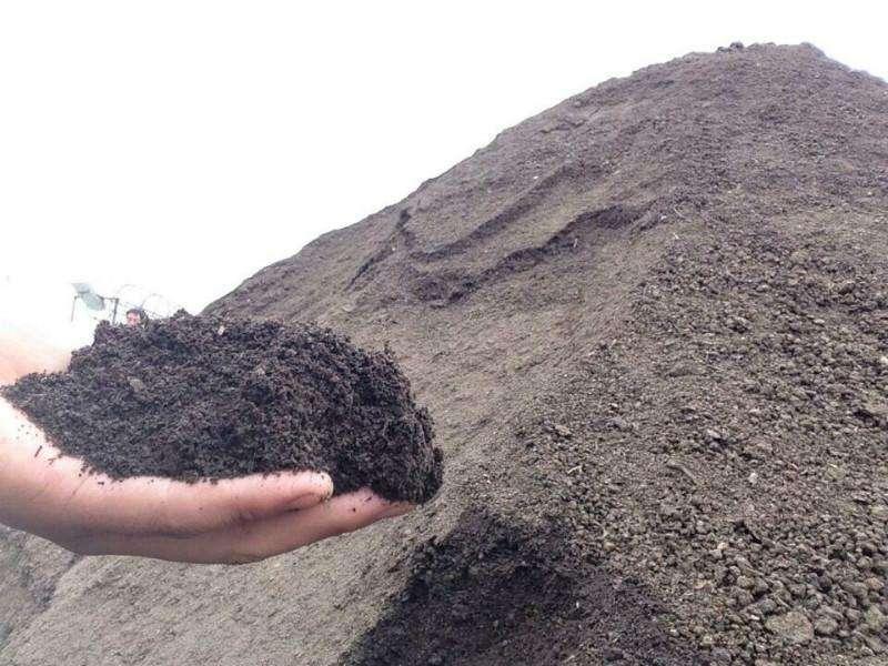 什么有机肥对果树秋季施肥用更好?什么时间用更好?
