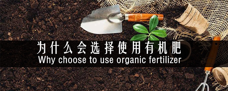 为什么选择使用要用有机肥