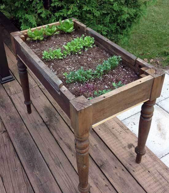 桌子改造_园艺创意