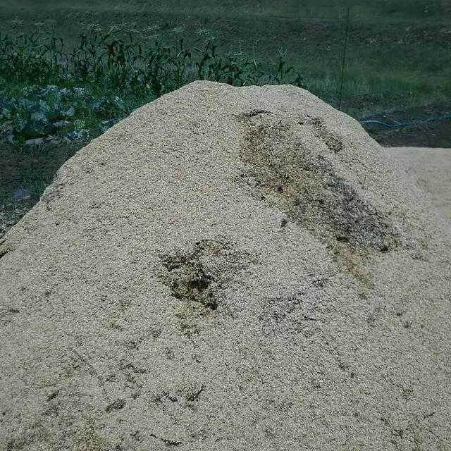 自制堆肥_日本堆肥