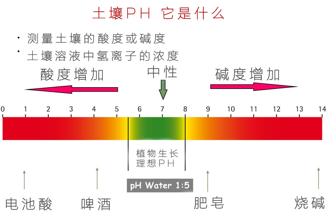 知识图谱 如何调节土壤酸碱度