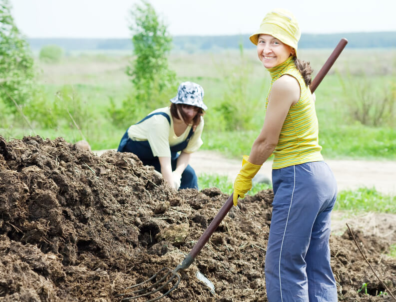 养花人身边的3种有机营养土,一毛钱都不用花!