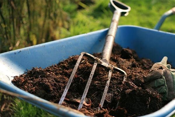 用市场上销售的有机肥,贵公司有什么好的建议吗