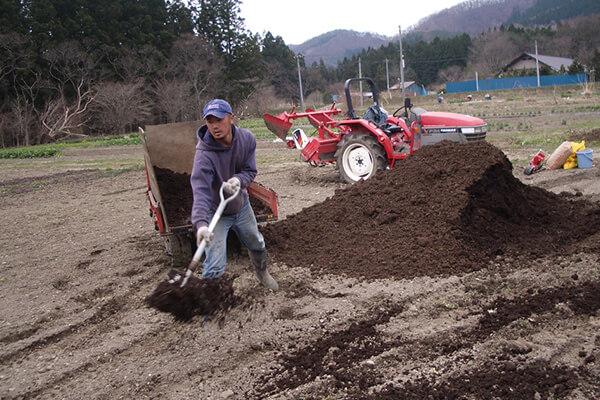 什么是农家肥?使用农家肥会有什么问题产生?