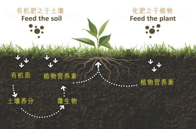 买来的有机肥里含复合肥怎样使用?