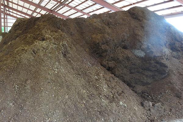 为什么开始注重使用有机肥料?