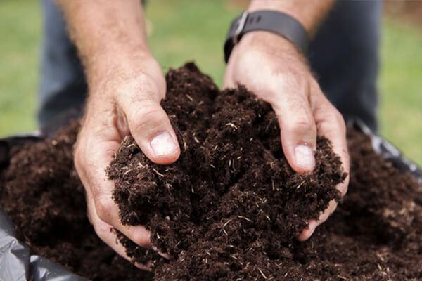 生物有机肥_生物有机肥批发