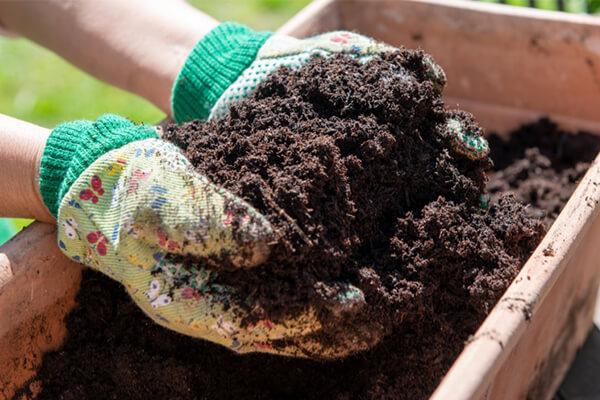 用了生物有机肥还用施氮磷钾吗?