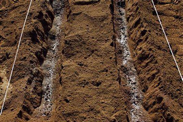 秋季施生物菌肥需要注意那些问题?