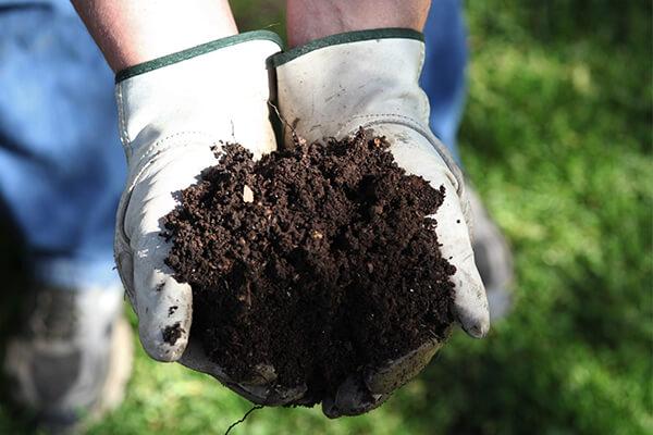 理性使用微生物菌肥才能让真正的好产品发扬光大,才能让农民真正受益!