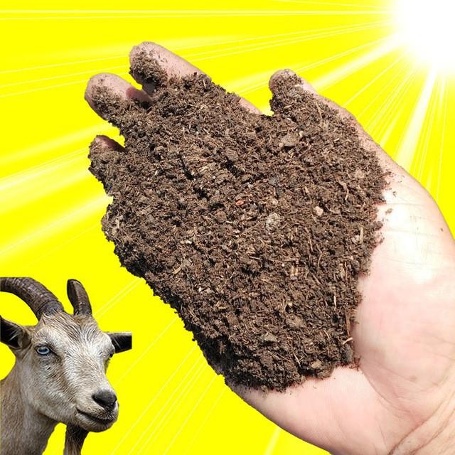 羊粪有机肥